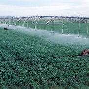 Irrigation Systems are using Slipring Assemblies, or Motor-Driven Hose Reels for transport the water